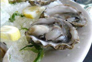 صادرات صدف خوراکی به کشورهای همسایه