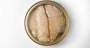 قیمت روز تن ماهی تاپسی در نمایندگی فروش