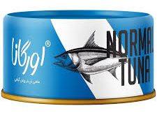 بازار فروش انواع طعم های تن ماهی